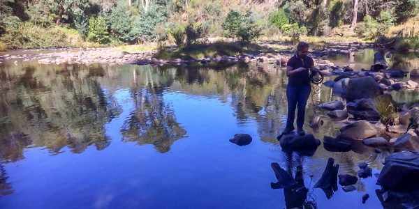 Water quality monitoring on the Thomson River