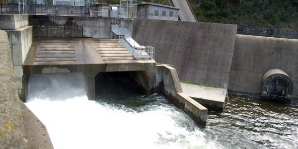 Environmental water being released from the Thomson Dam into the Thomson River system