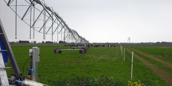 Spray Irrigation in the MID