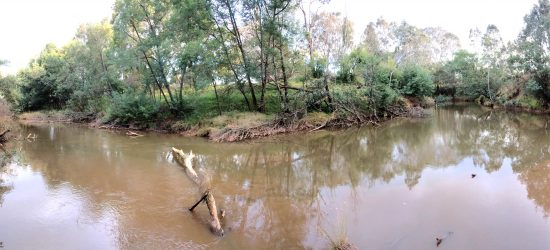 Macalister River at Bellbird Corner before the winter high flow