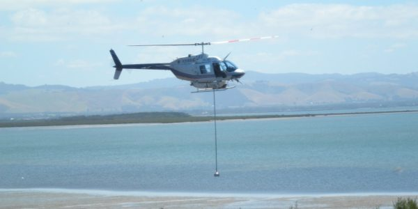 Spartina spray helicopter
