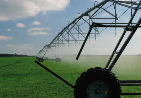 An irrigator watering a crop