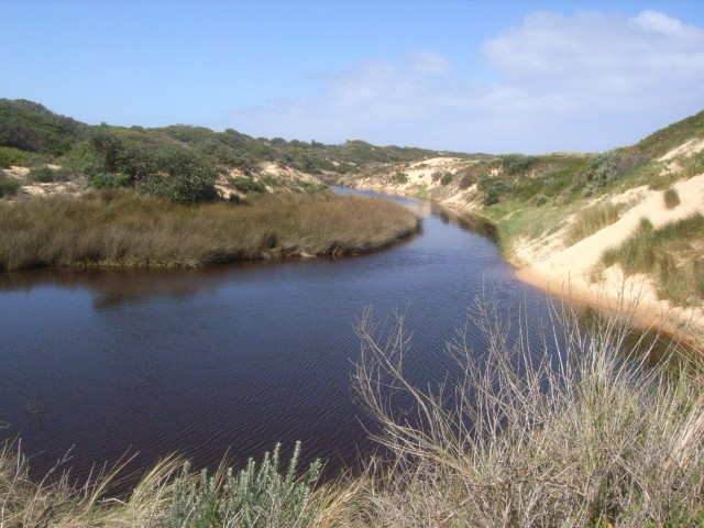 Coal Creek estuary at Harmers Haven
