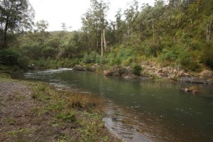 Water flowing in the Thomson River