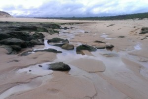 The Mouth of the Powlett RIver at low tide