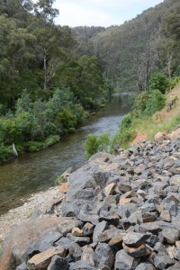 Flood recovery work on the Thomson River