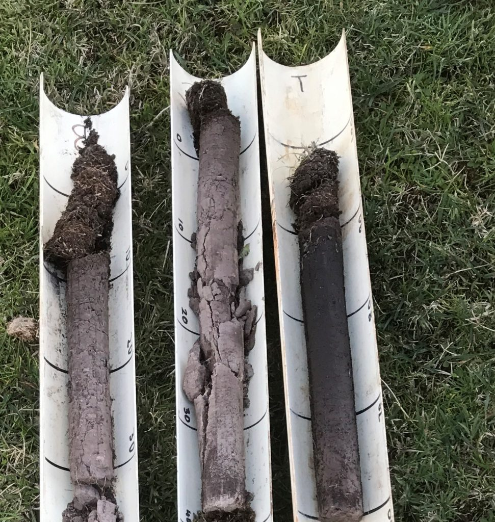 May 2018 - Soil cores L-R Aerated, Control, Soilkee SoilKee cores were dark, moist, humic with worm activity. The root mat had broken down. pH 5.5 The other cores were grey, dry with root mat present. pH 4.5