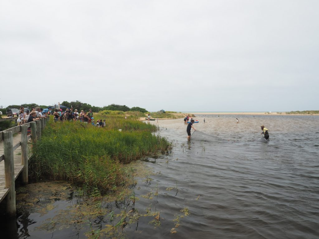 Fishing demonstration