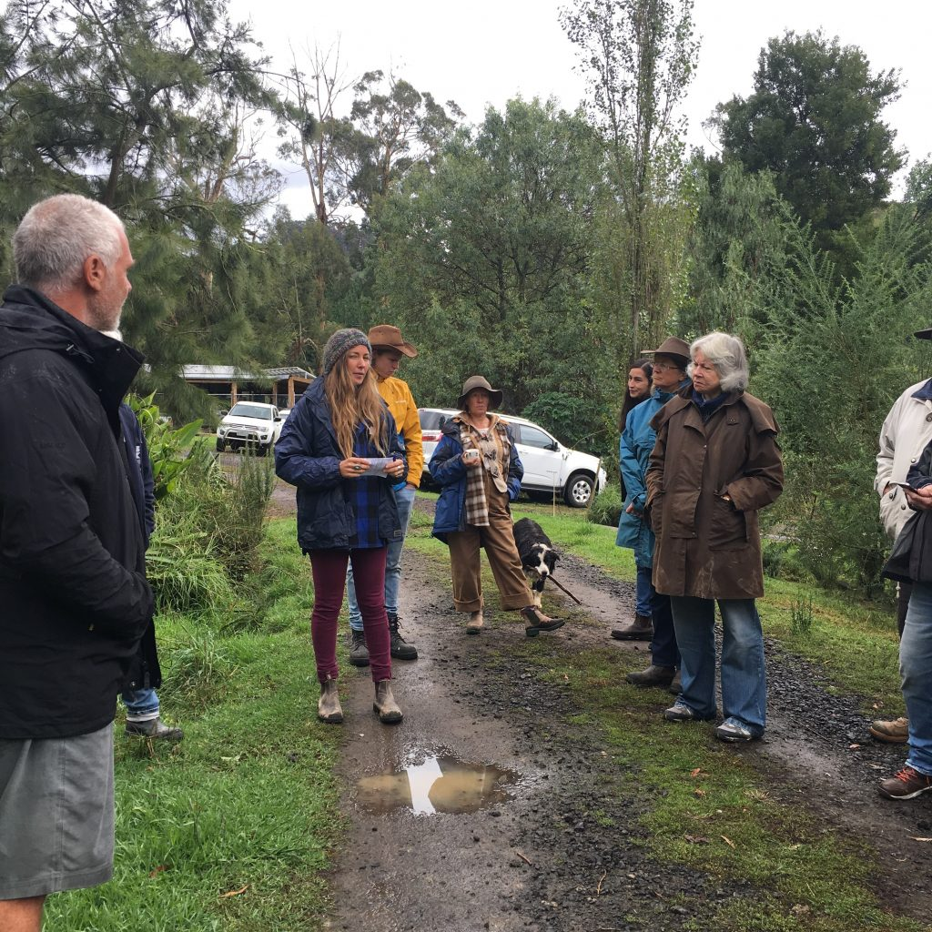 photo of permaculture training day